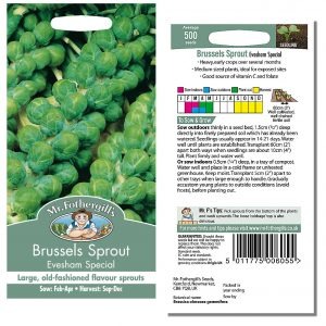 Mr. Fothergill's Seeds – Brussels Sprout Evesham Special