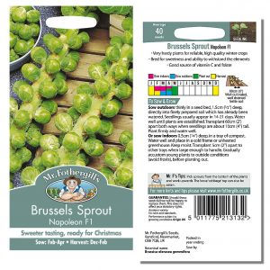 Mr. Fothergill's Seeds – Brussels Sprout Napoleon F1