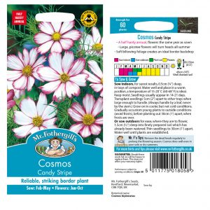 Mr. Fothergill's Seeds – Cosmos Candy Stripe