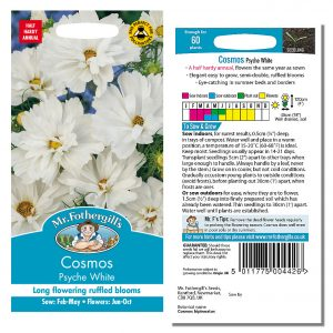 Mr. Fothergill's Seeds – Cosmos Psyche White