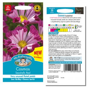 Mr. Fothergill's Seeds – Cosmos Seashells Red