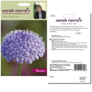 Sarah Raven's Didiscus 'Blue Lace' Seeds by Johnsons