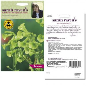Sarah Raven's Nicotiana langsdorffii Seeds by Johnsons