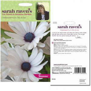 Sarah Raven's Osteospermum 'Sky & Ice' Seeds by Johnsons