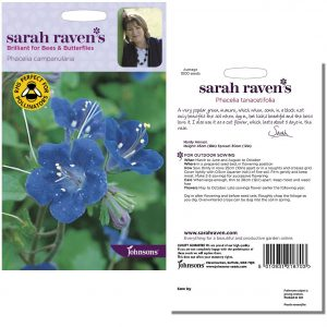 Sarah Raven's Phacelia campanularia Seeds by Johnsons
