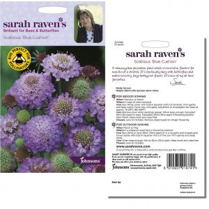 Sarah Raven's Scabious 'Blue Cushion' Seeds by Johnsons