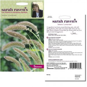 Sarah Raven's Setaria 'Lowlander' Seeds by Johnsons