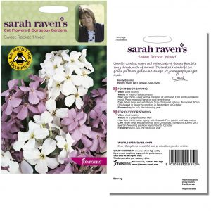 Sarah Raven's Sweet Rocket 'Mixed' Seeds by Johnsons