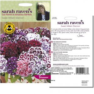 Sarah Raven's Sweet William 'Electron' Seeds by Johnsons