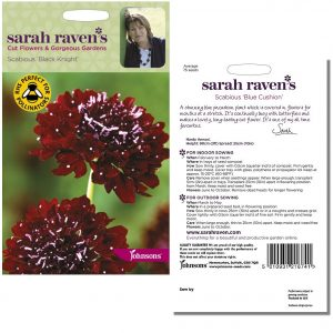 Sarah Raven's Scabious 'Black Knight' Seeds by Johnsons