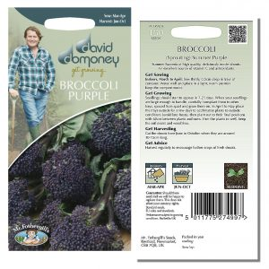 David Domoney (Mr. Fothergill's) Seeds – Broccoli (Sprouting) Summer Purple