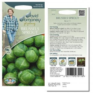 David Domoney (Mr. Fothergill's) Seeds – Brussels Sprout Brest F1