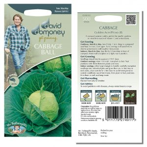 David Domoney (Mr. Fothergill's) Seeds – Cabbage Ball  Golden Acre/Primo (II)