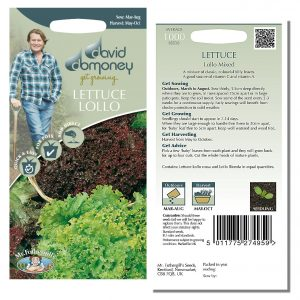 David Domoney (Mr. Fothergill's) Seeds – Lettuce Lollo Mixed