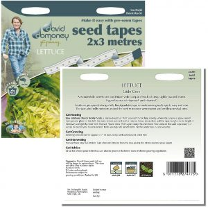 David Domoney (Mr. Fothergill's) Seeds – Lettuce Little Gem Seed Tapes