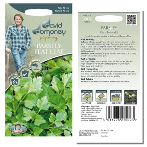 David Domoney (Mr. Fothergill's) Seeds – Parsley Flat Leaf