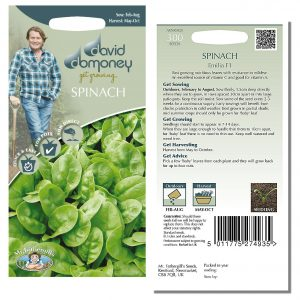 David Domoney (Mr. Fothergill's) Seeds – Spinach Emilia F1