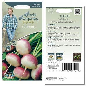 David Domoney (Mr. Fothergill's) Seeds – Turnip Purple Top Milan