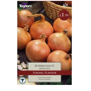 Taylors Bulbs – Hercules F1 Pre-packed Onion Sets – Pack of 50