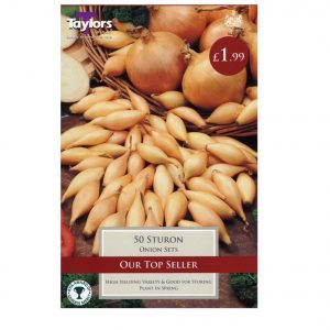 Taylors Bulbs – Sturon Pre-packed Onion Sets – Pack of 50