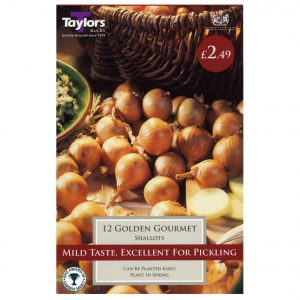 Taylors Bulbs – Golden Gourmet Pre-packed Shallots – Pack of 12